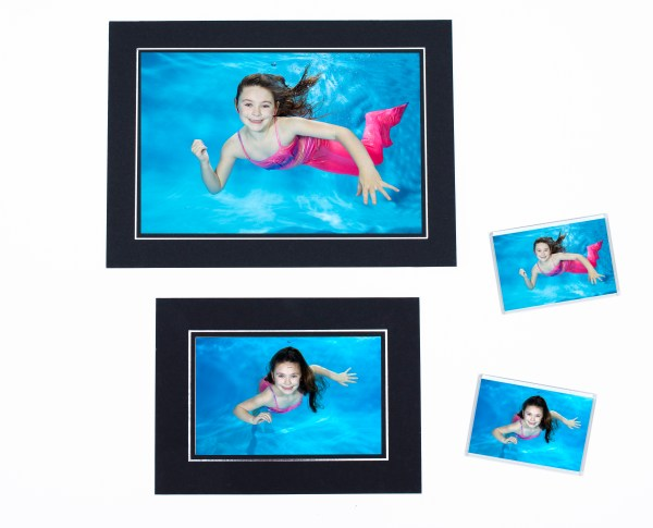 Seahorse photo pack