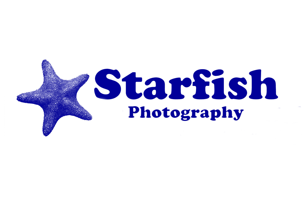Starfish Underwater Photography